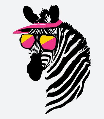 zebra B white