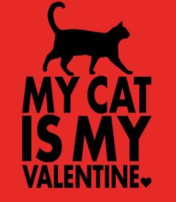 tričko na valentýna kočka