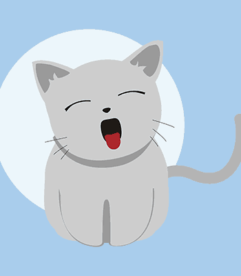 kočka03 b