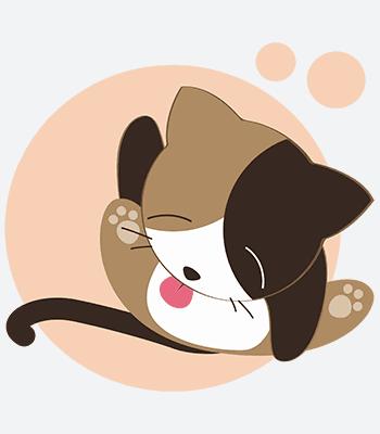 kočka04 b